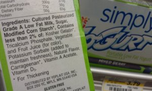 Gogurt's ingredient list.  Cornstarch.  Potassium sorbate.  Carrageenan.  Sorry.  This doesn't make the cut.