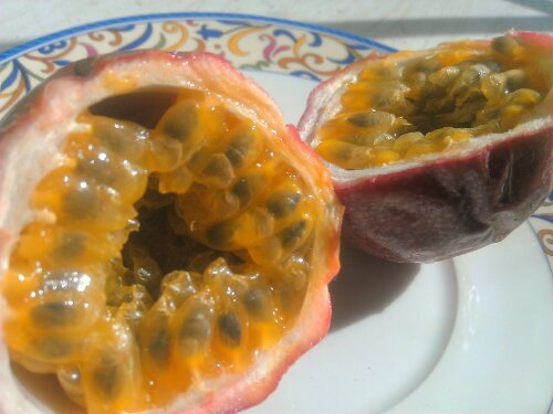 Interior of a passion fruit