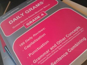 Easy Grammar Daily Grams