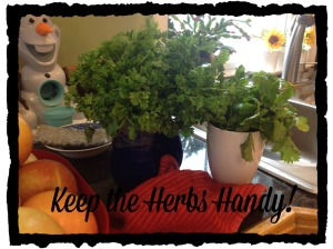 Keep the Herbs Handy
