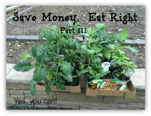 Save money eating right