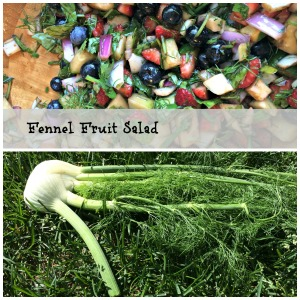 fennel salad and bulb